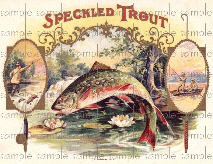Speckled Trout Vintage Digital Cigar Box Art Ephemera Scrapbooking Altered Art Decoupage
