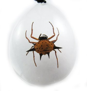 Oval Insect Bug Amber Lucite Necklace Pendant Spider