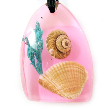 Amber Charm Real Seashell Necklace Pendant Multi-color NO.5