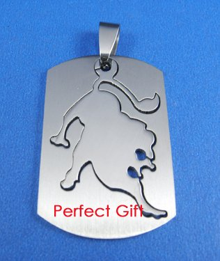 Leo Stainless Steel Horoscope Zodiac Necklace Pendant Dog Tag 2-Piece