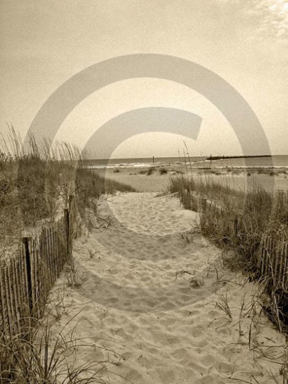 The Beach Awaits - 4005 - 8x10 Framed Photo