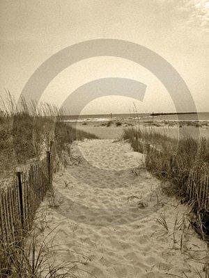 The Beach Awaits - 4005 - 8x10 Framed Photo