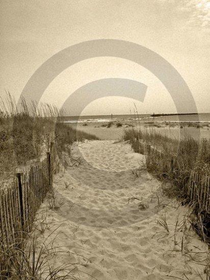 The Beach Awaits - 4005 - 11x17 Framed Photo