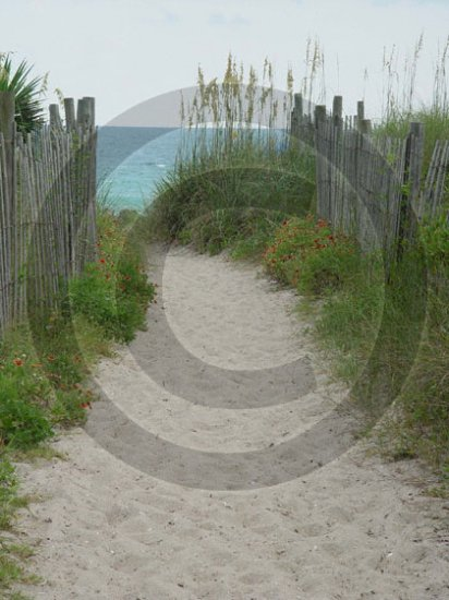 Beach Access 31 - 4007 - 11x17 Framed Photo