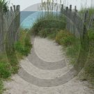 Beach Access 31 - 4007 - 11x17 Photo