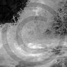 Divine Strength - Little Duck Falls - 7047 - 8x10 Photo