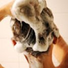 ChiTi Java Guava Shampoo