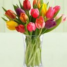 Stem Mixed Tulip Bouquet