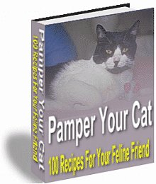 Pamper Your Cat