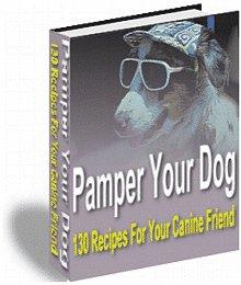 Pamper Your Dog