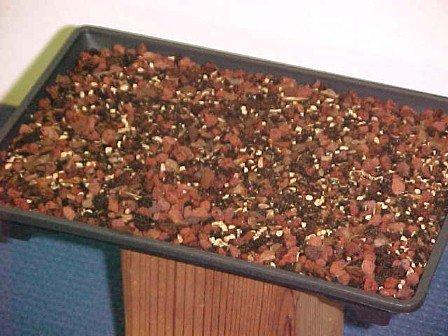 Bonsai-Mart Famous Bonsai Soil