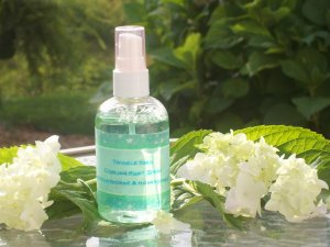 Twinkle Toes Cooling Foot Spray *4oz