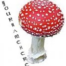 Ebay Store Logo Red and White Mushroom Dress Up your Ebay Store Add your Store Name!!