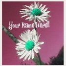 Ebay Store Logo White Green Maroon Daisies Flowers Dress Up your Ebay Store Add your Store Name!!