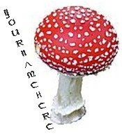 Ecrater Store Logo and HomePage Image Red Mushroom Dress Up your Ecrater Store Add your Store Name!!