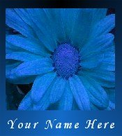 Ecrater Store Logo & HomePage Image Blue Flower Dress Up your Ecrater Store Add your Name!