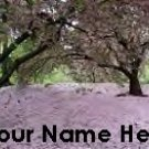 Ecrater Store Logo & HomePage Image Cherry Blossom Tree Pink Dress Up your Ecrater Store Your Name!