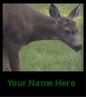 Ecrater Store Logo & HomePage Image Deer Doe Green Dress Up your Ecrater Store Add your Name!