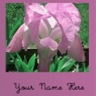 Ecrater Store Logo & HomePage Image Pink Flower Dress Up your Ecrater Store!!