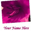 Ecrater Store Logo & HomePage Image Pink Magenta Lily Flower Dress Up your Ecrater Store!!