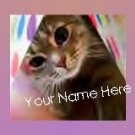 Neoloch.com Store Banner and Logo Combo Cute Kitten Cat  Add your Store Name!