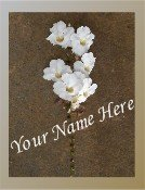 Neoloch.com Store Banner and Logo Combo Brown White Hawaiian Flower Add your Store Name!