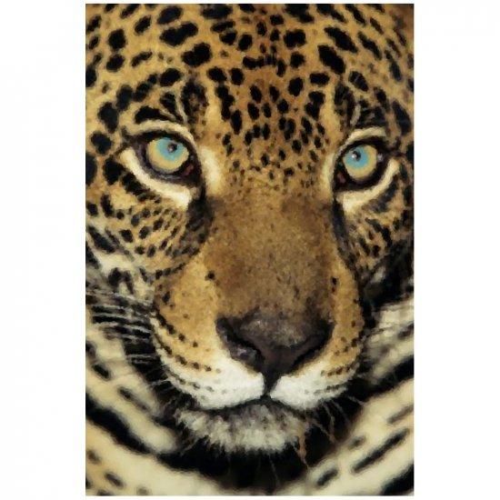 Jaguar - 8x12 Print