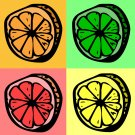 Slice - 8x8 Print - Featured on Cuteable.com