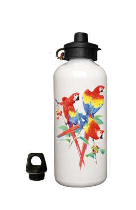 Macaw Parrots Birds Aluminum White Water Bottle Eco Green
