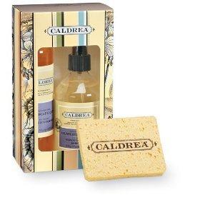 Caldrea Lavender Pine  Kitchen Gift Set 8 oz. Countertop Cleanser & Dish Soap + Sponges
