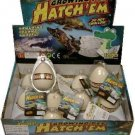 12 Hatchem Crocodile Eggs