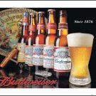 Budweiser Beer Bottle History Tin Sign #1155