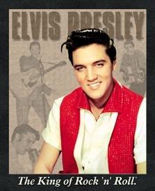 Elvis Presley Red Shirt Portrait Tin Sign #881