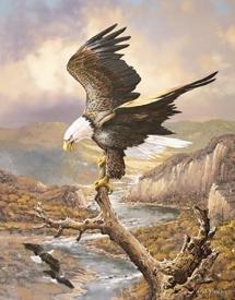 American Bald Eagle Tin Sign #1029