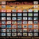 Federal Duck Stamp Tin Sign #1244