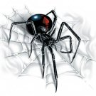 SPIDER STICKER - RARE NEW BLACK WIDOW Decal