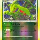 39 Grovyle REVERSE FOIL (U) Stormfront Pokemon TCG