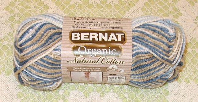 Bernat Organic Cotton Oasis Yarn 1 Skein