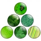Green Color Themed 1.25 inch Pinback Button Badge Set 2