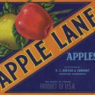 Apple Lane