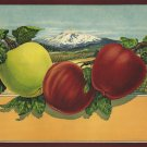 SIMPSON & DOELLER, PORTLAND & BALTO APPLE STOCK LABEL