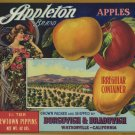 APPLETON 3 1/2 TIER NEWTOWN PIPPINS APPLE CRATE LABEL
