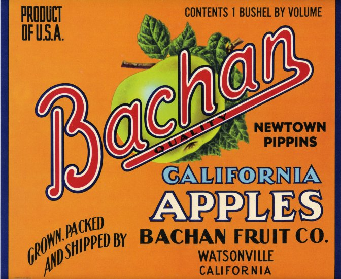 BACHAN NEWTOWN PIPPINS APPLE CRATE LABEL