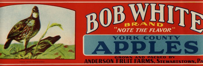 BOB WHITE YORK COUNTRY APPLE LUG LABEL