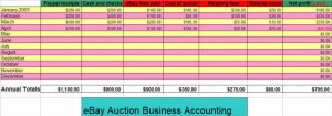 AUCTION BUSINESS MONTHLY ACCOUNTING SOFTWARE for ALL eBAY Sellers,  Version 5.0
