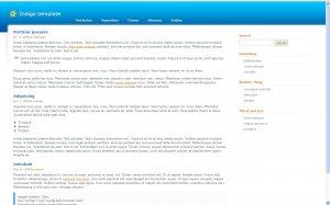 Website Design T0023