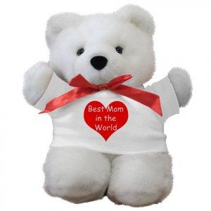 Novelty Teddy Bear