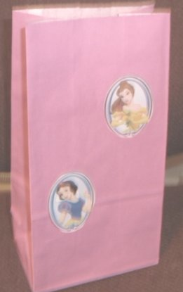 Disney Princess Colored Lunch Bag