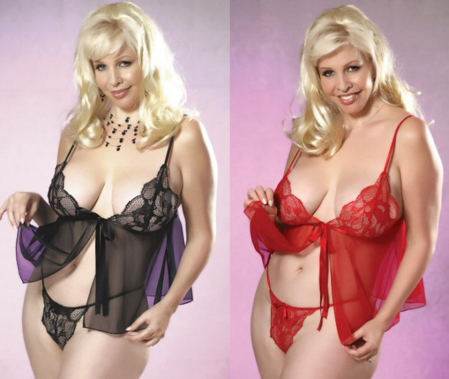 2 Piece Plus Size Lace Babydoll Set