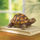 POLYRESIN TURTLE FIGURINE---Item #: 37499